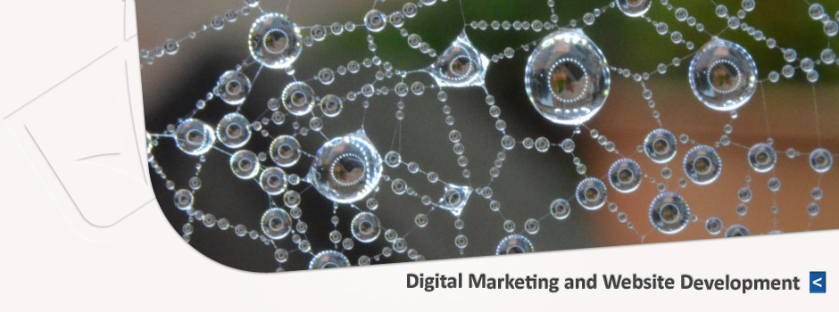 Digital Marketing and Website Development